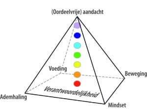 De Piramide van Inzicht